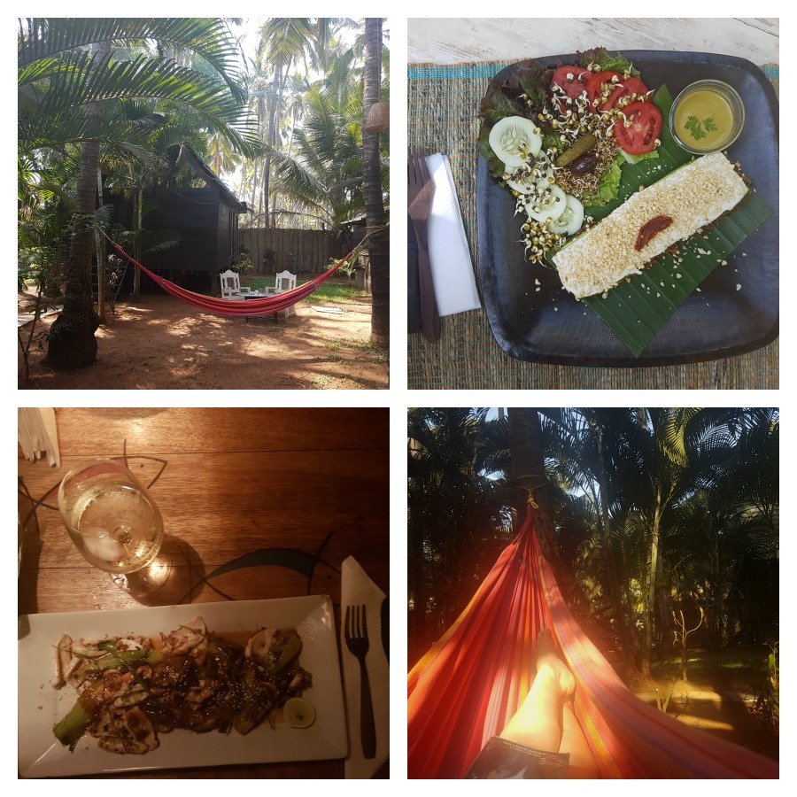 holiday in goa, ashwem beach, leela cottages